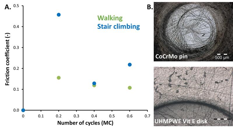 BT_Walking vs stair climbing_COF