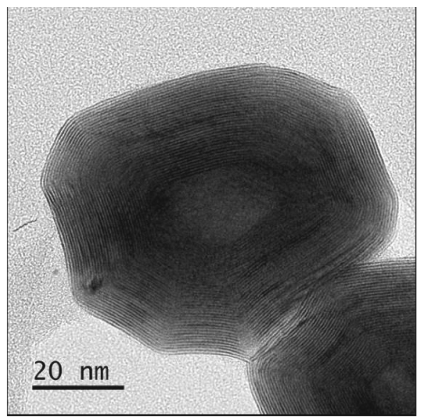 TEM Image of an IF-WS2 particle